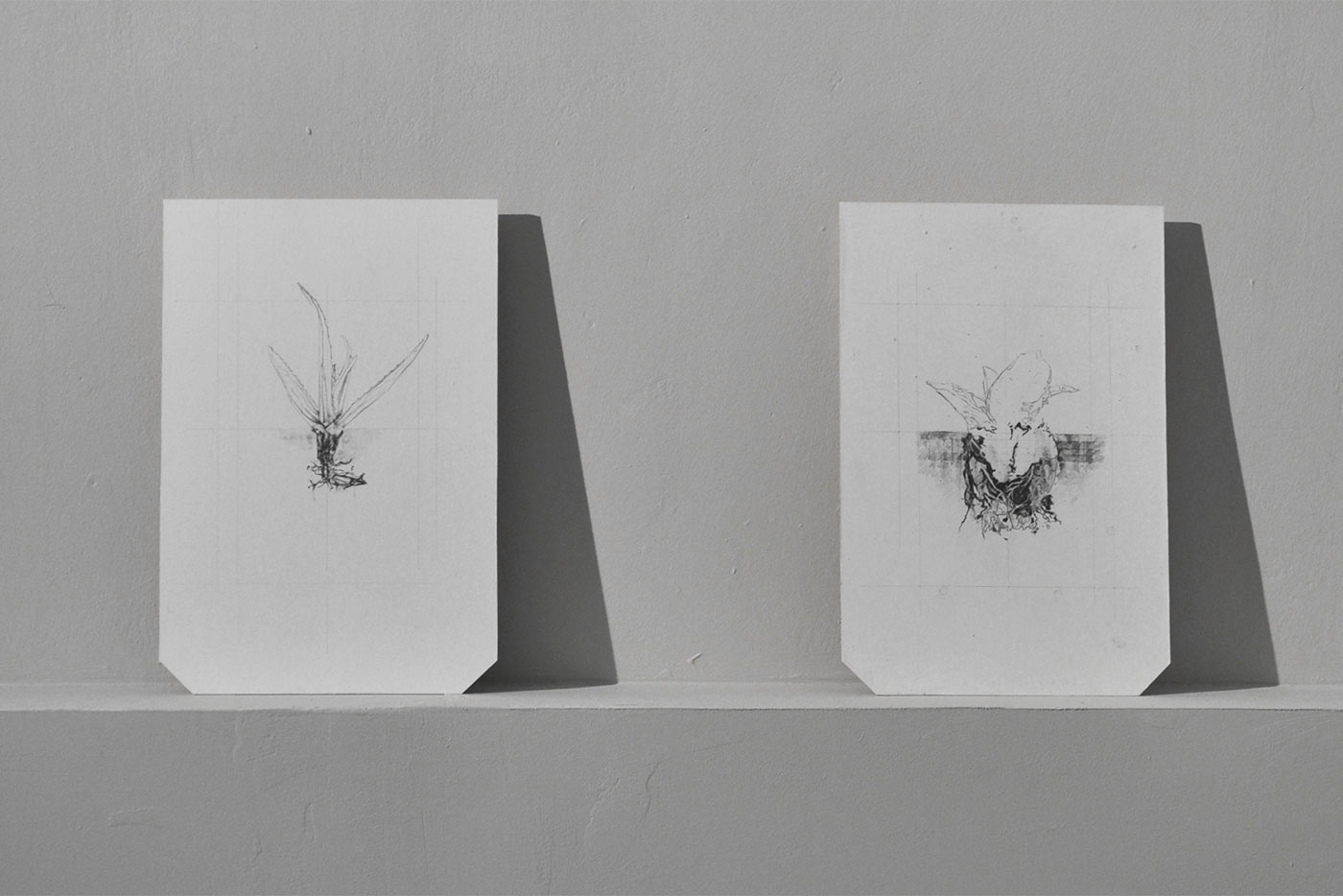 graphite on paper, wood panels, audio virtual surround. Installation view Z2O Gallery