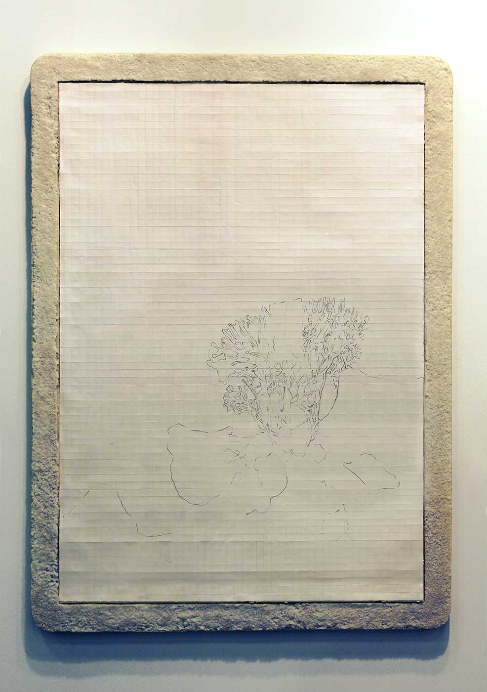 graphite on paper, frame on sea salt