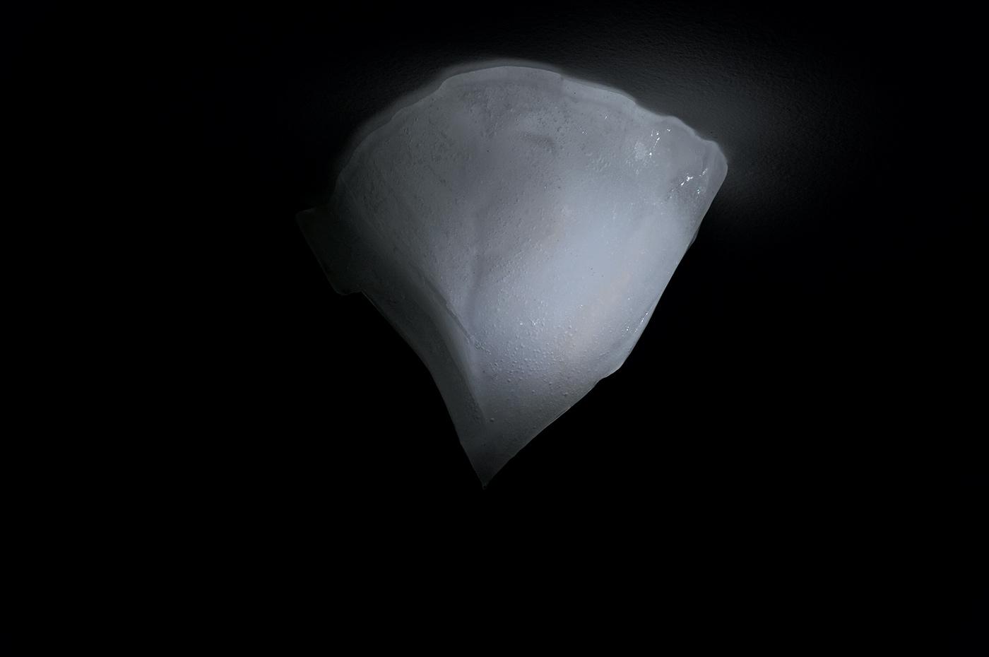 iceberg in ice. 2010
