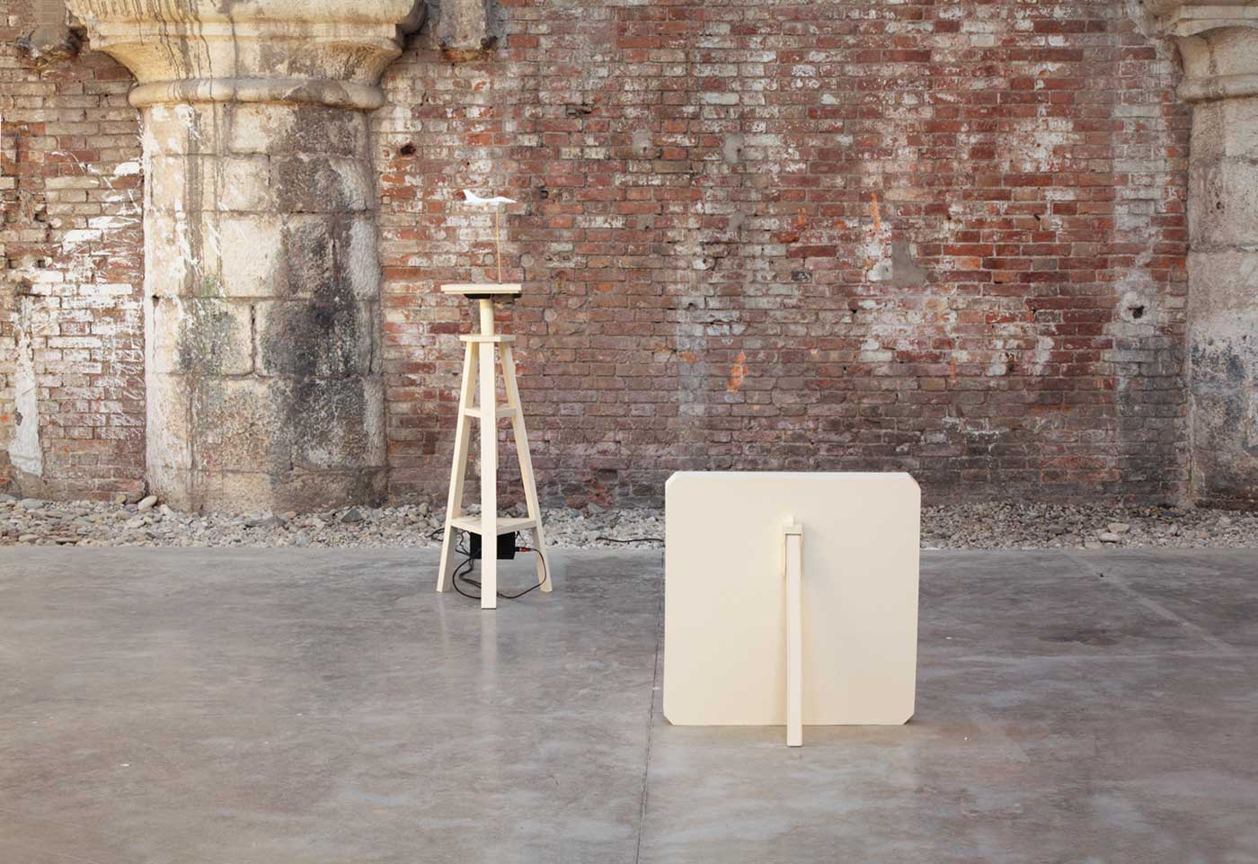 carton plant, paper, graphite, Lascod plaster, glue, wood, sound equipment, dia projector, variable dimensions. 2011